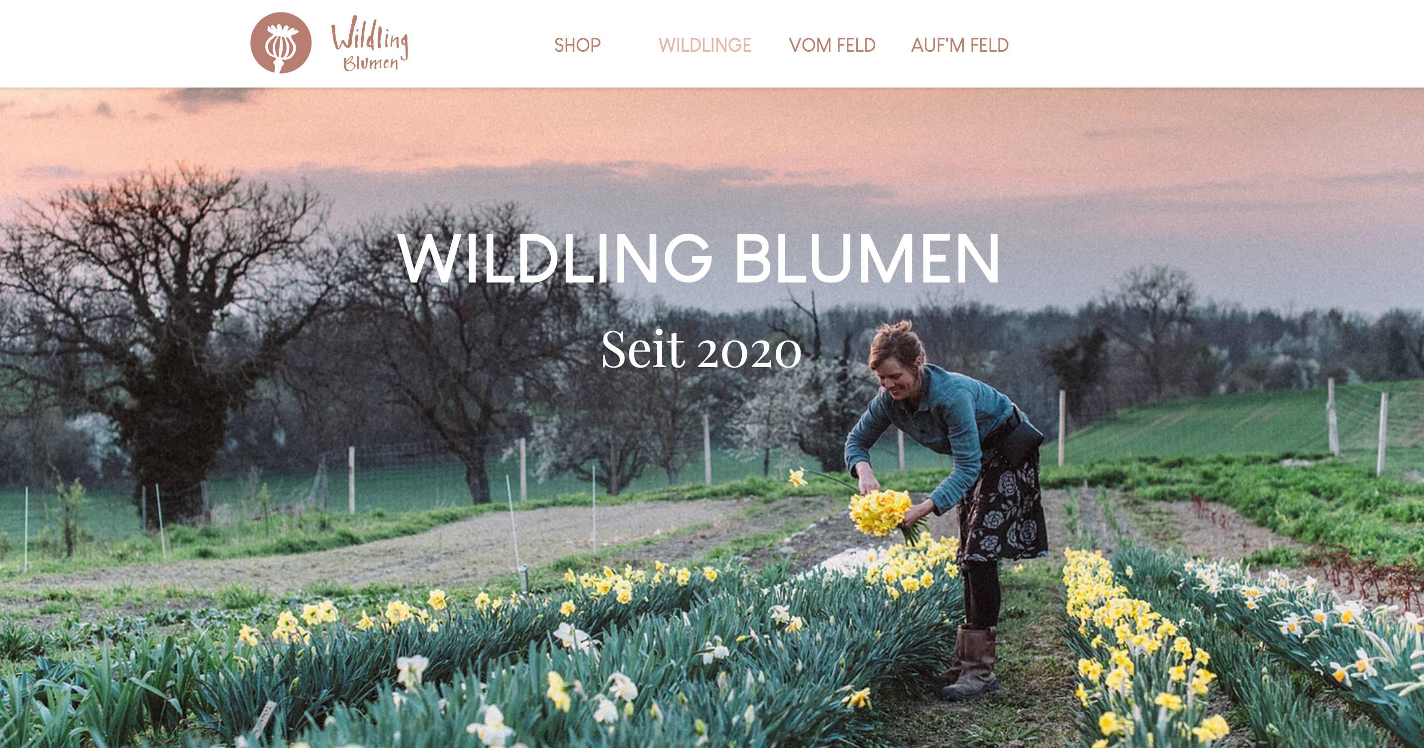 Professionelle Businessfotos für die Website