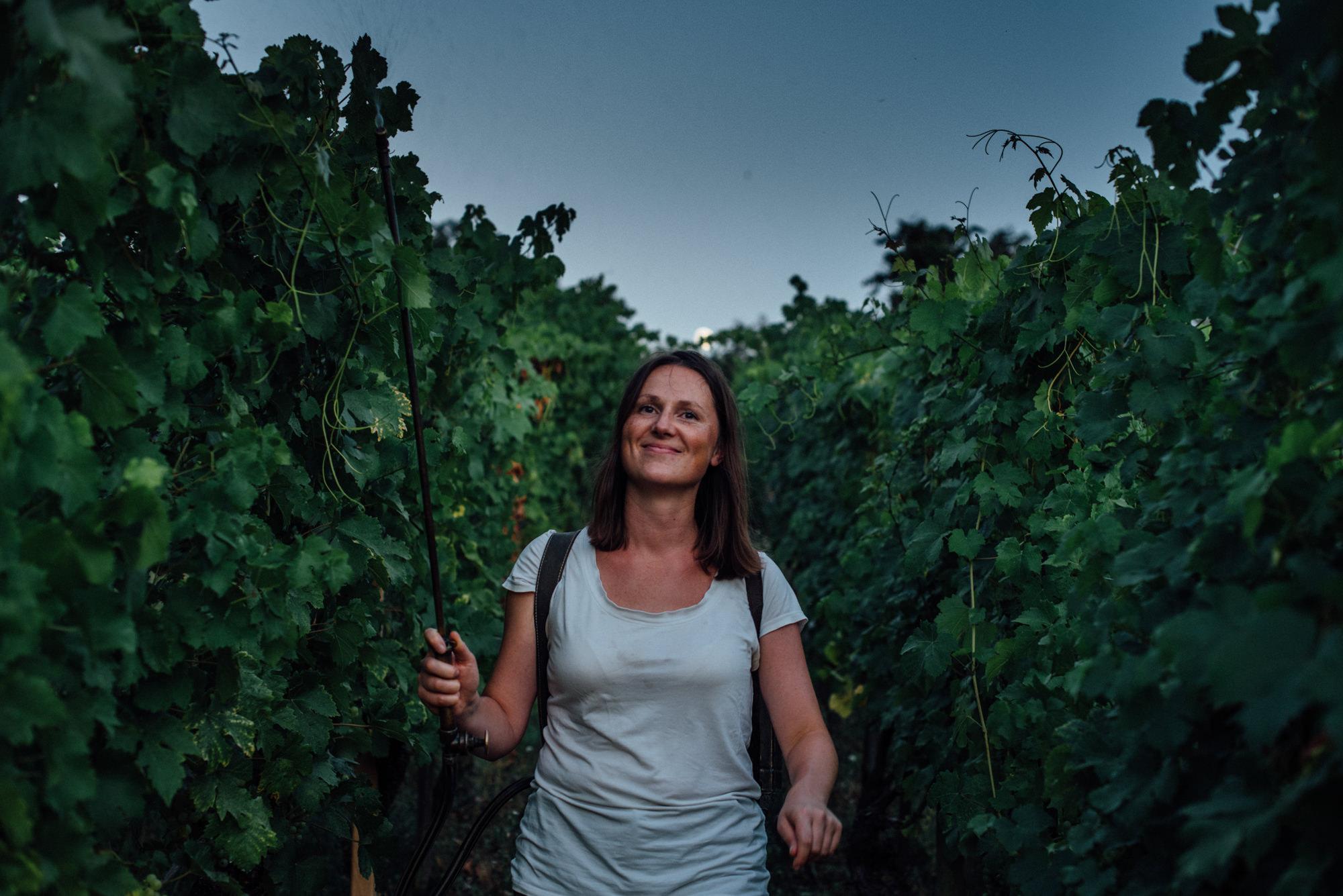 Unternehmensfotografie Fotograf in Basel, Gründer portrait Bio Weinbauern Makalié