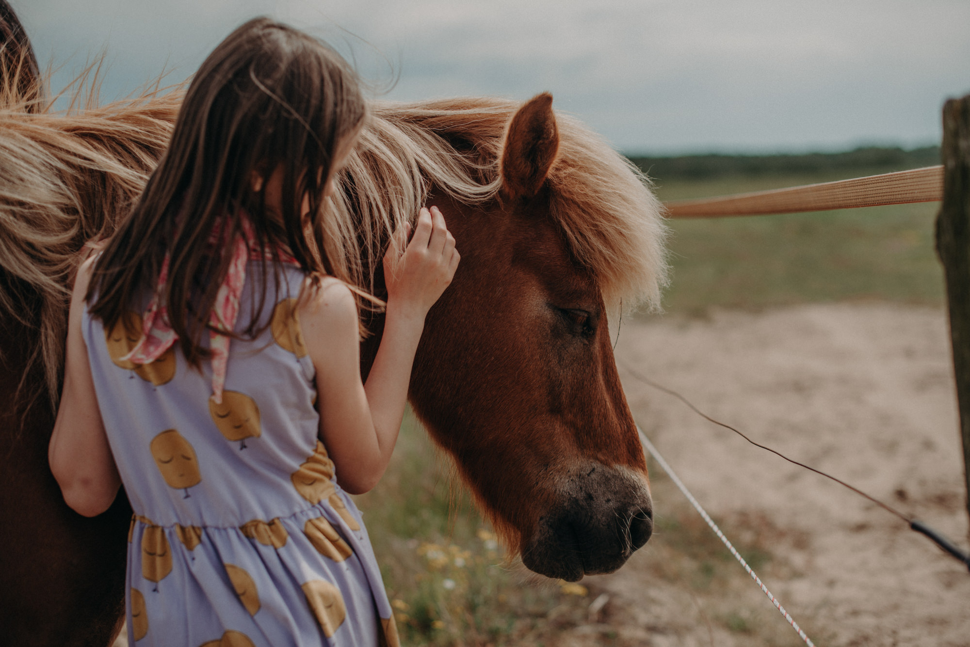 Fotoshooting Ideen Outdoor Familienfotoshooting Basel, Mädchen mit Pferd, Fotograf in basel